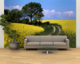 Canola, Farm, Yellow Flowers, Germany Wall Mural – Large