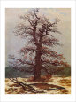 Oak in the Snow Gicleetryck av Caspar David Friedrich
