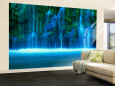 Waterfalls (Wall Murals) Posters