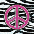 Zebra Peace Art Print by Louise Carey