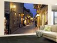 Města (nástěnné výjevy) Posters