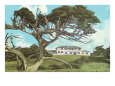 Cypress Point Golf Club, Pebble Beach, California Lámina giclée
