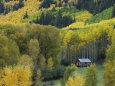 Log Cabin in Fall Colors, Dolores, San Juan National Forest, Colorado, USA Fotografisk tryk af Rolf Nussbaumer