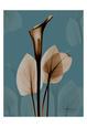 Fields of Blue I Umělecká reprodukce od Albert Koetsier