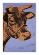 Cow, c.1971 (Purple and Orange) Digitálně vytištěná reprodukce od Andy Warhol