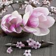 Stillbillede af blomster (fotografi) Posters
