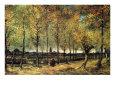 Allé med poppeltræer (van Gogh) Posters