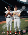 Brooks Robinson Posters