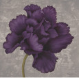 Purple Flowers (Decorative Art) Posters