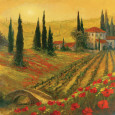 Poppies of Toscano I Art Print by Art Fronckowiak