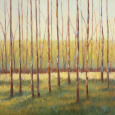 Grove of Trees Kunsttryk af Libby Smart