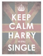 Keep Calm, Harry is Still Single Art Print