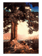 Maxfield Parrish (selvklæbende vægkunst) Posters