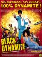Black Dynamite - French Style Póster