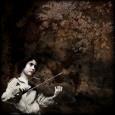 Violiner (sort/hvid-fotografi) Posters