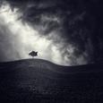 Alone Again Fotografisk tryk af Luis Beltran