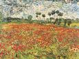 Field of Poppies, Auvers-Sur-Oise, c.1890 Sanatsal Reprodüksiyon ilâ Vincent van Gogh