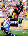 Hines Ward (Steelers) Posters