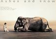 Elefanter (fotografi) Posters