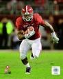 Universidad de Alabama Posters