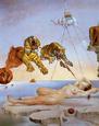 Drøm, forårsaget af en bi der flyver rundt om et granatæble, et sekund før opvågnen - Dali Posters