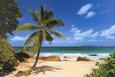 Palm Beach (Tropical Landscape Photo) Art Poster Print Poster
