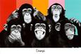 The Chimp Compilation Pop Art Print Poster Plakat