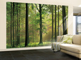 Color Photography Wall Murals Posters