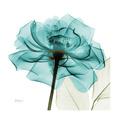 Fotografías de flores azules Posters