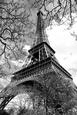 Fotografías en blanco y negro de la torre Eiffel Posters