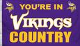 Minnesota Vikings Flags Posters