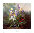 Landscape with Irises Art Print by Barbara Koch