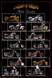 Motorcycles (Photography) Posters