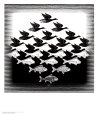 Sky and Water Art Print by M. C. Escher