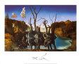 Svaner genspejler elefanter, ca.1937 Kunsttryk af Salvador Dalí
