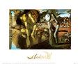 La metamorfosis de Narciso (Dalí) Posters