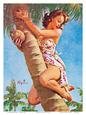 Hawaiian Beauties Posters