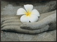 Buddha at Wat Yai Chai Khon Reproducción en lienzo enmarcado por Alison Wright
