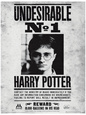 Harry Potter (film) Posters