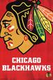 Chicago Blackhawks Logo Póster