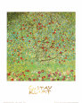 The Apple Tree Art Print by Gustav Klimt