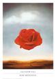 Røde blomster Posters