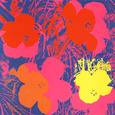 Flowers, 1970 (Red, Yellow, Orange on Blue) Art Print by Andy Warhol