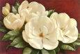 Magnolia Crimson I Kunsttryk af Igor Levashov
