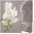 Kissing Orchid Kunst på glas