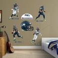 Seattle Seahawks Power Pack Vinilo decorativo