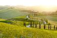 Sunny Fields in Tuscany, Italy Fotografická reprodukce od ZoomTeam