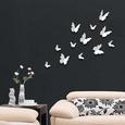 3D Butterflies - White Kalkomania ścienna