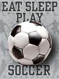 Soccer (Decorative Art) Posters