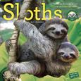 Kalendarze ze zwierzętami Posters